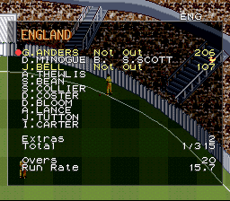 Super International Cricket - Nice job - User Screenshot